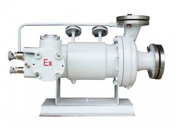 B型基本型屏(ping)蔽泵